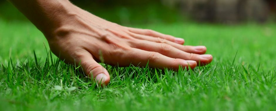let lawnpro take care of your lawns